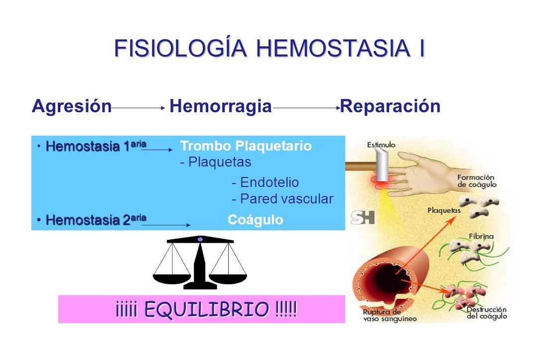 FISIOLOGÍA HEMOSTASIA I Agresión Hemorragia Reparación ¡¡¡¡¡ EQUILIBRIO !!!!! Hemostasia 1 aria Hemostasia 1 aria Trombo Plaquetario - Plaquetas - End