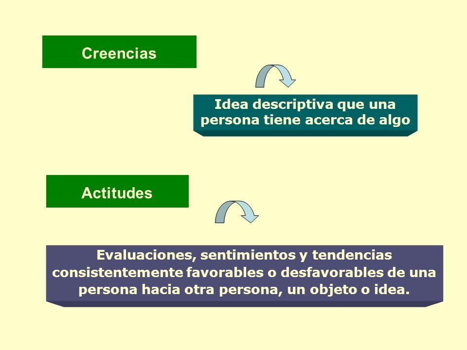 Actitudes Evaluaciones, sentimientos y tendencias consistentemente favorables o desfavorables de una persona hacia otra persona, un objeto o idea. Cre