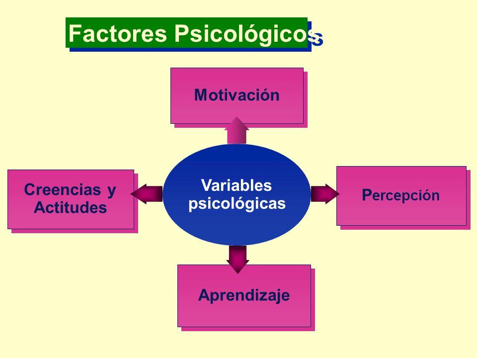 Factores Psicológicos Variables psicológicas Motivación P ercepción Aprendizaje Creencias y Actitudes Creencias y Actitudes