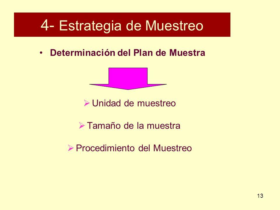 13 4- Estrategia de Muestreo Determinación del Plan de Muestra Unidad de muestreo Tamaño de la muestra Procedimiento del Muestreo