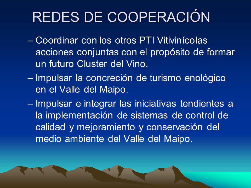 REDES DE COOPERACIÓN –Coordinar con los otros PTI Vitivinícolas acciones conjuntas con el propósito de formar un futuro Cluster del Vino. –Impulsar la