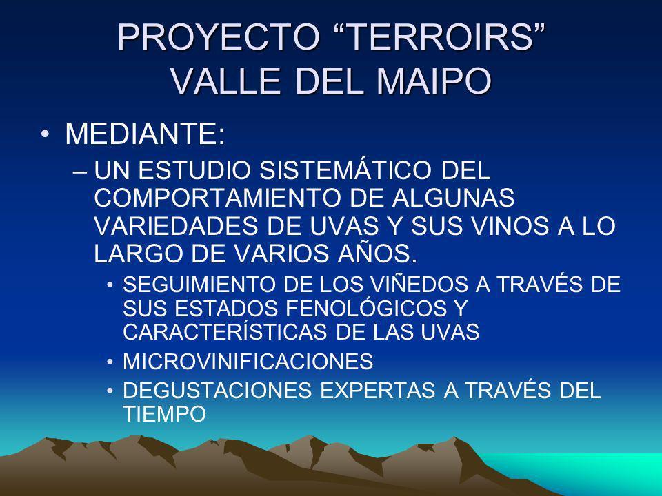 PROYECTO TERROIRS VALLE DEL MAIPO MEDIANTE: –UN ESTUDIO SISTEMÁTICO DEL COMPORTAMIENTO DE ALGUNAS VARIEDADES DE UVAS Y SUS VINOS A LO LARGO DE VARIOS
