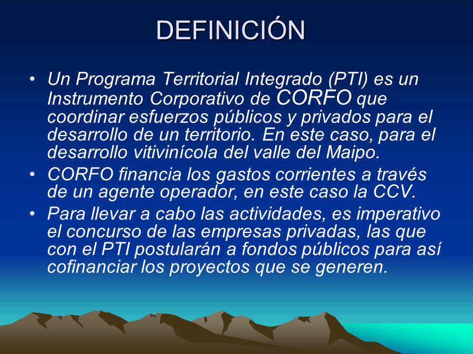 DEFINICIÓN Un Programa Territorial Integrado (PTI) es un Instrumento Corporativo de CORFO que coordinar esfuerzos públicos y privados para el desarrol
