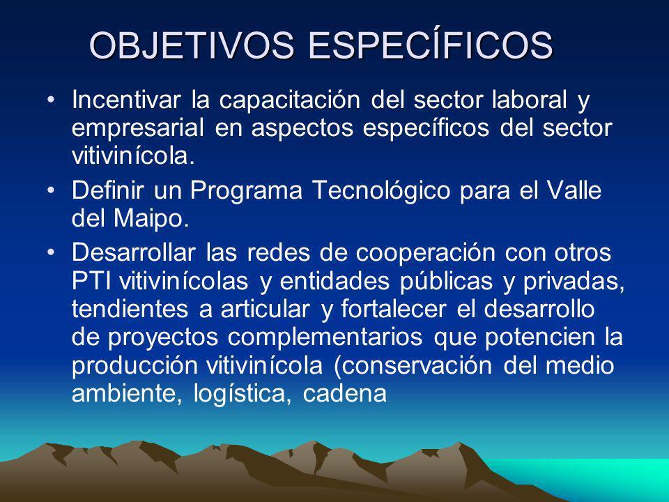 OBJETIVOS ESPECÍFICOS Incentivar la capacitación del sector laboral y empresarial en aspectos específicos del sector vitivinícola. Definir un Programa