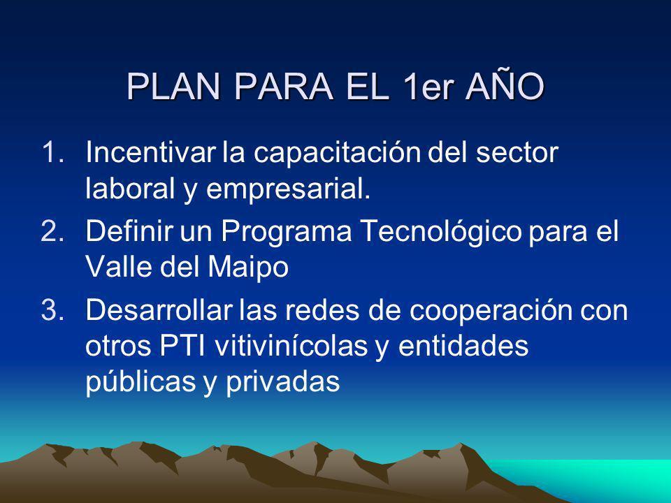 PLAN PARA EL 1er AÑO 1.Incentivar la capacitación del sector laboral y empresarial. 2.Definir un Programa Tecnológico para el Valle del Maipo 3.Desarr