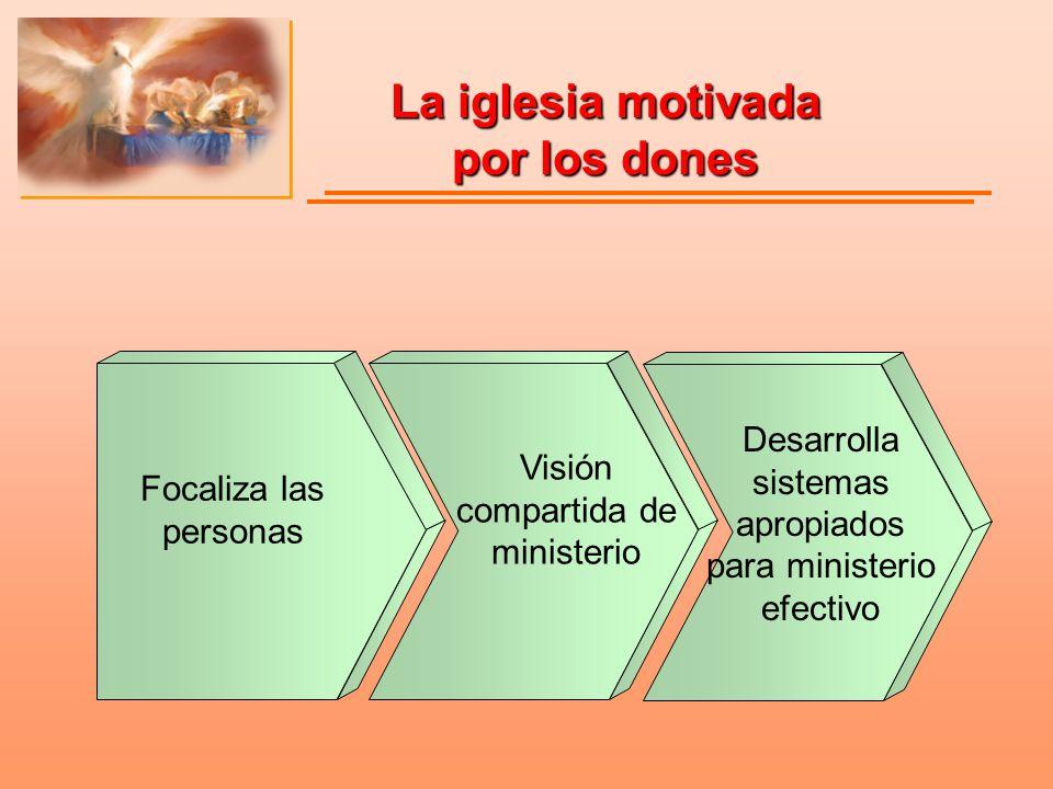 La iglesia motivada por los dones Focaliza las personas Visión compartida de ministerio Desarrolla sistemas apropiados para ministerio efectivo