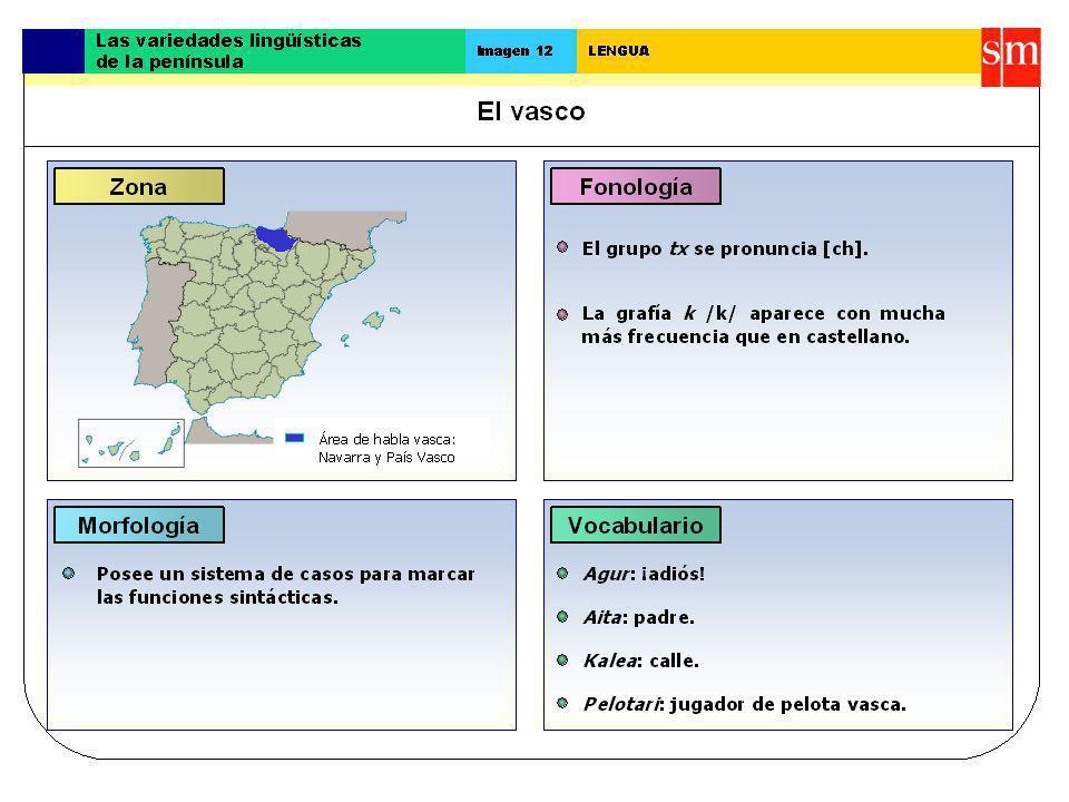 El euskera o vasco El euskera o vascuence es el tercer idioma de España por número de hablantes, aunque también se extiende por algunas comarcas del sur de Francia, además del País Vasco y de parte del norte de Navarra.