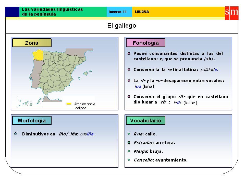 Dialectos La clasificación aceptada de los dialectos gallegos es la elaborada por Fernández Rei que, de norte a sur, divide el gallego en tres áreas importantes: la costera, la central y la oriental.