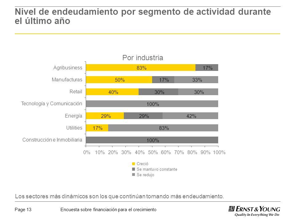 Encuesta sobre financiación para el crecimientoPage 13 Nivel de endeudamiento por segmento de actividad durante el último año Por industria Los sectores más dinámicos son los que continúan tomando más endeudamiento.