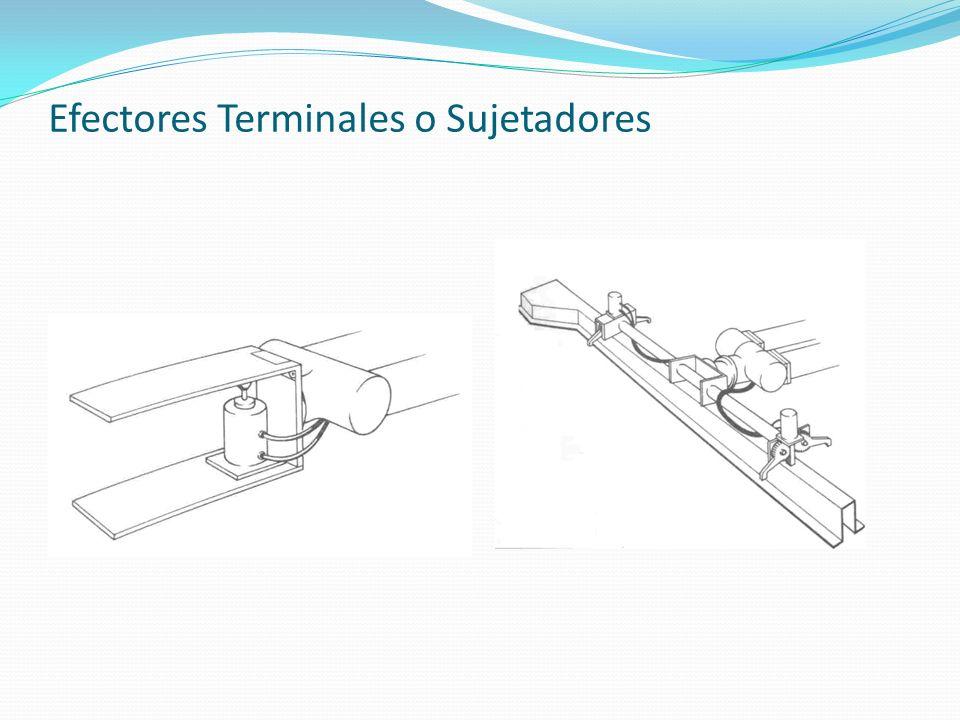 Efectores Terminales o Sujetadores