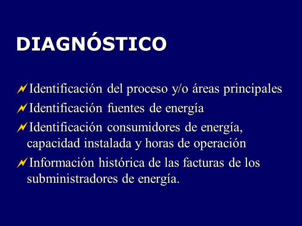 DIAGNÓSTICO Identificación del proceso y/o áreas principales Identificación del proceso y/o áreas principales Identificación fuentes de energía Identi