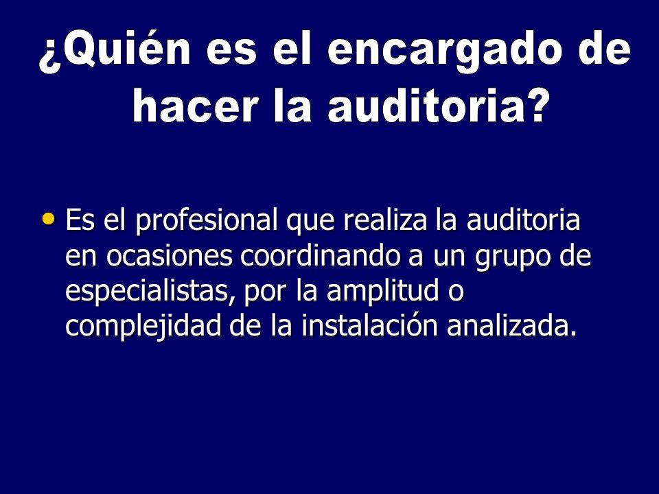 Es el profesional que realiza la auditoria en ocasiones coordinando a un grupo de especialistas, por la amplitud o complejidad de la instalación anali
