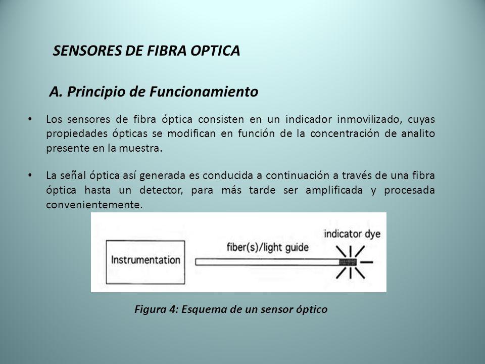 SENSORES DE FIBRA OPTICA A. Principio de Funcionamiento Los sensores de fibra óptica consisten en un indicador inmovilizado, cuyas propiedades ópticas
