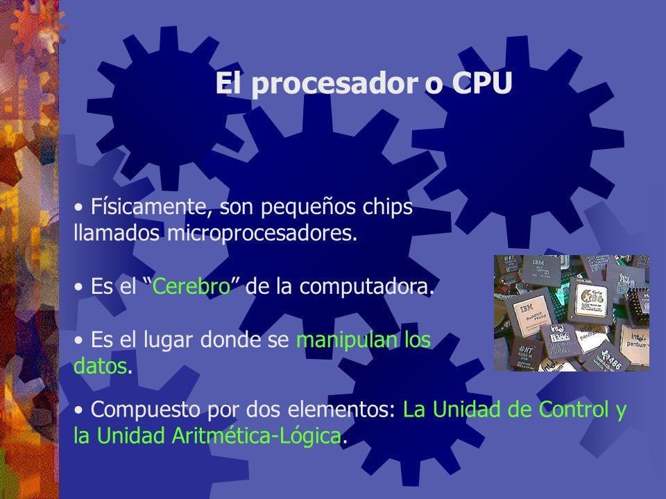 Físicamente, son pequeños chips llamados microprocesadores. Es el Cerebro de la computadora. Es el lugar donde se manipulan los datos. El procesador o