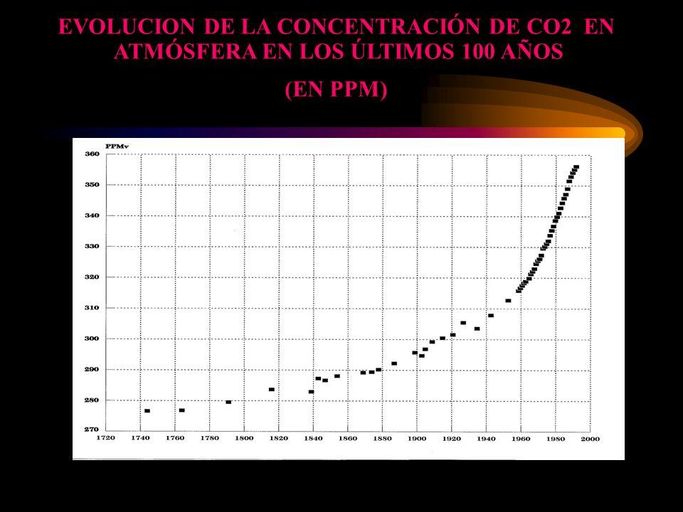 EVOLUCION DE LA CONCENTRACIÓN DE CO2 EN ATMÓSFERA EN LOS ÚLTIMOS 100 AÑOS (EN PPM)