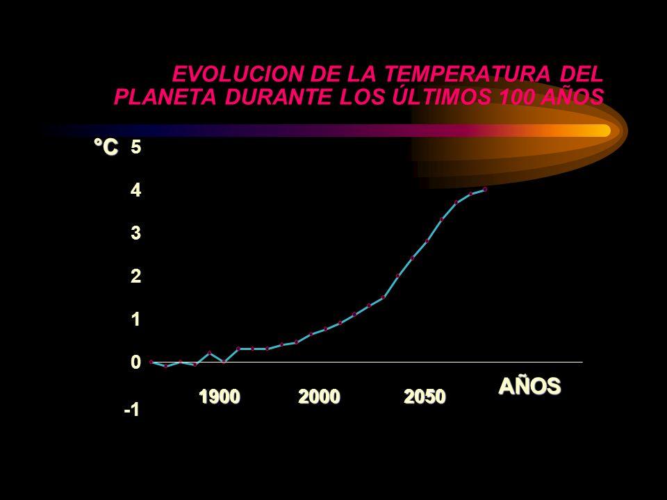 EVOLUCION DE LA TEMPERATURA DEL PLANETA DURANTE LOS ÚLTIMOS 100 AÑOS 0 1 2 3 4 5 AÑOS°C 190020002050