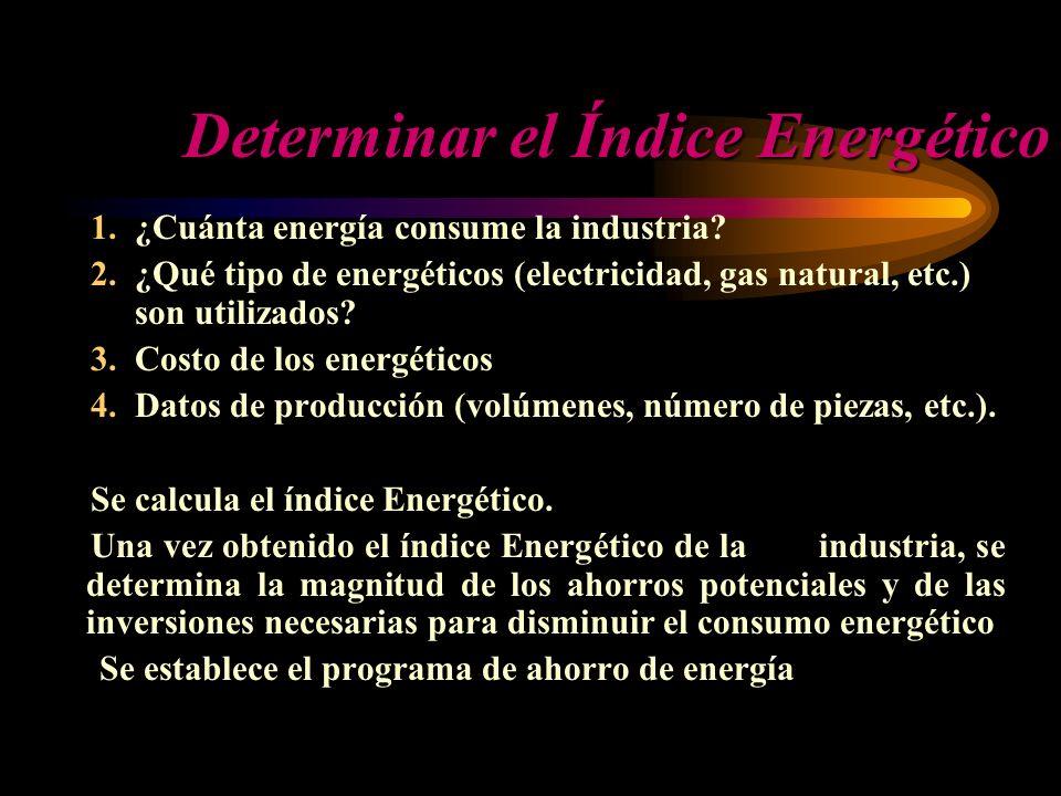Determinar el Índice Energético 1.¿Cuánta energía consume la industria? 2.¿Qué tipo de energéticos (electricidad, gas natural, etc.) son utilizados? 3