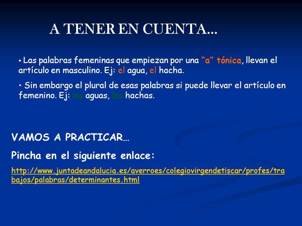 A TENER EN CUENTA… Las palabras femeninas que empiezan por una a tónica, llevan el artículo en masculino. Ej: el agua, el hacha. Sin embargo el plural