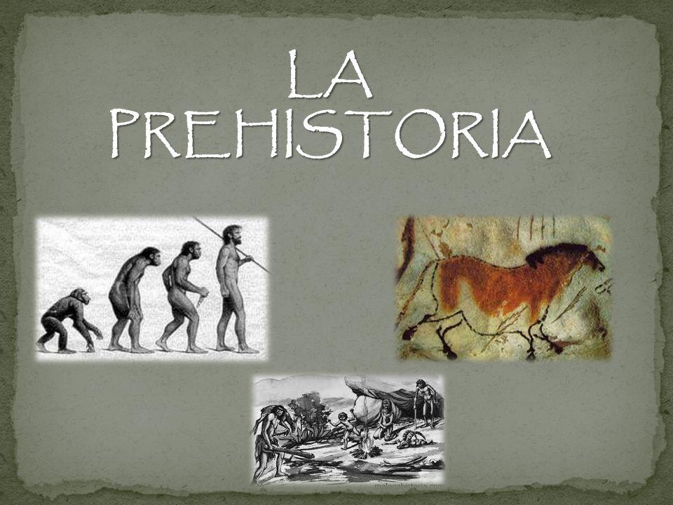 LA HOMINIZACIÓN Llamamos así a la larga evolución de una especie de simio hasta el ser humano actual Australopithecus Hace 3,5 millones de años Homo habilis Hace 2,5 millones de años Homo antecesor Hace 1 millón de años Homo sapiens Hace 200.000 años