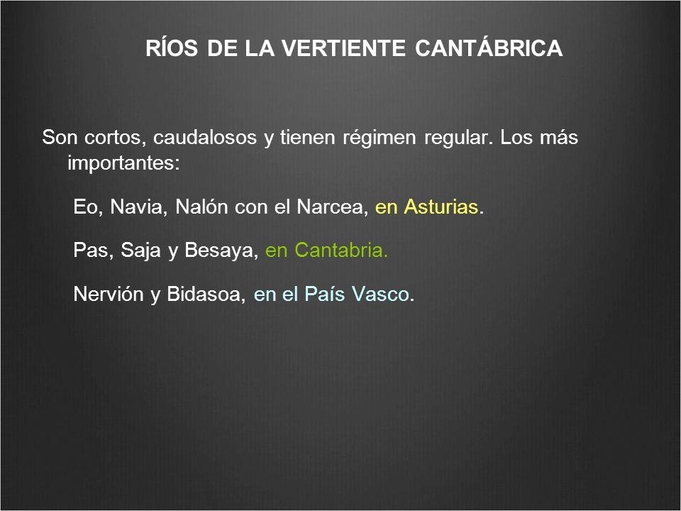 RÍOS DE LA VERTIENTE CANTÁBRICA Son cortos, caudalosos y tienen régimen regular. Los más importantes: Eo, Navia, Nalón con el Narcea, en Asturias. Pas