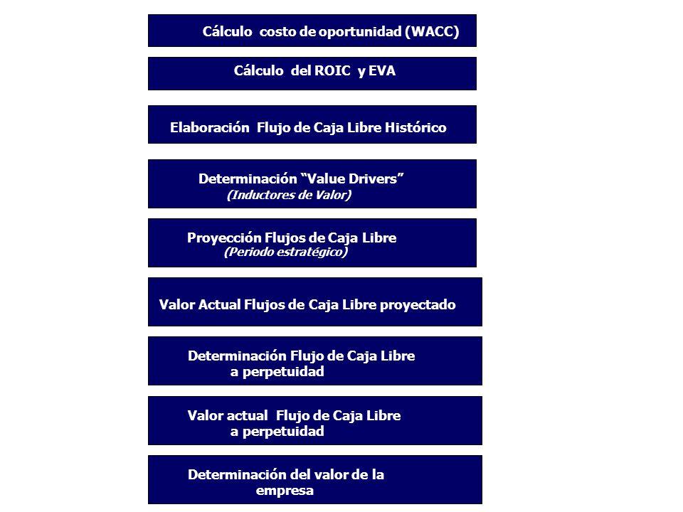 2 Cálculo costo de oportunidad (WACC) Cálculo del ROIC y EVA Elaboración Flujo de Caja Libre Histórico Determinación Value Drivers (Inductores de Valo
