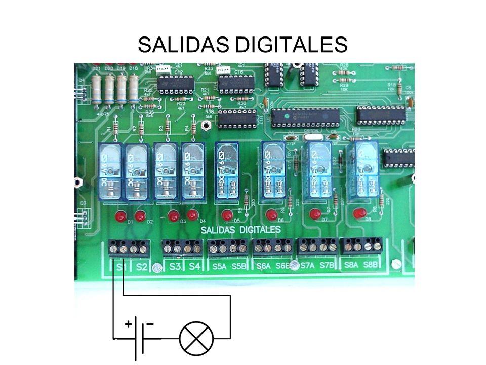 SALIDAS DIGITALES