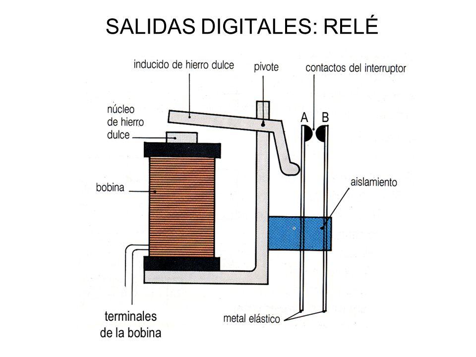 SALIDAS DIGITALES: RELÉ