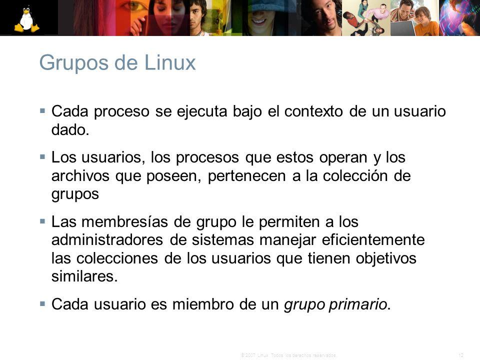 12© 2007 Linux. Todos los derechos reservados. Grupos de Linux Cada proceso se ejecuta bajo el contexto de un usuario dado. Los usuarios, los procesos
