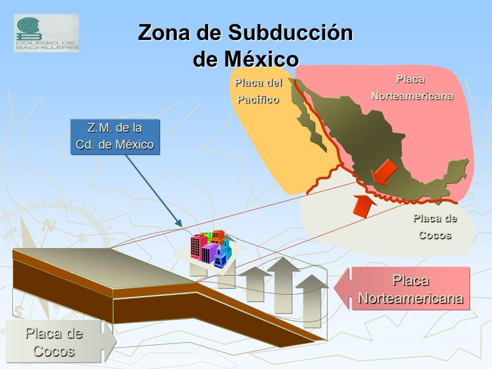 Placas Tectónicas en el Continente Americano 3 2. Placa de Cocos 2 3. Placa del Pacífico 4 4. Placa de Nazca 6 6. Placa del Caribe 1. Placa Norteameri