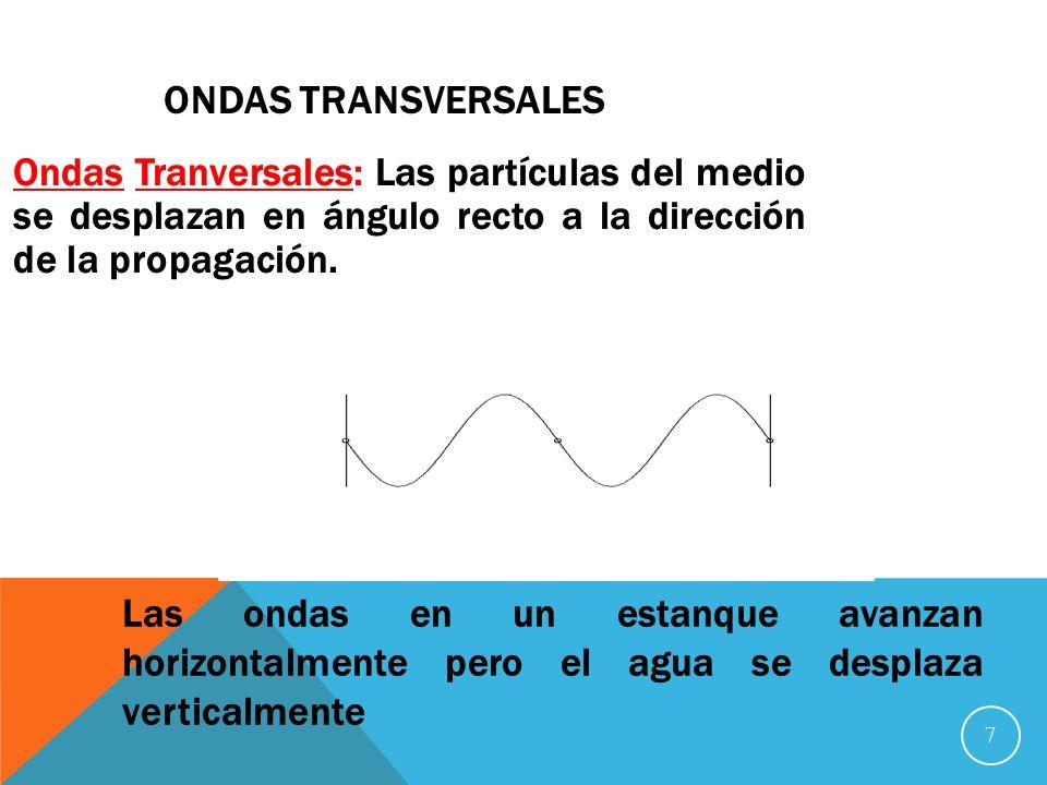 7 ONDAS TRANSVERSALES Ondas Tranversales: Las partículas del medio se desplazan en ángulo recto a la dirección de la propagación.