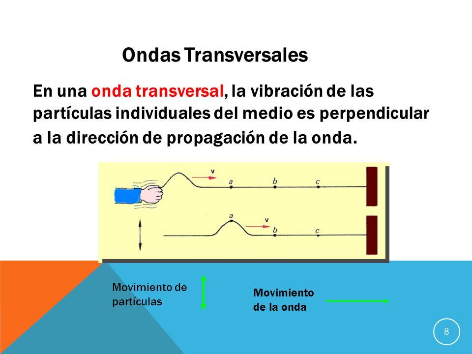 8 Ondas Transversales En una onda transversal, la vibración de las partículas individuales del medio es perpendicular a la dirección de propagación de la onda.