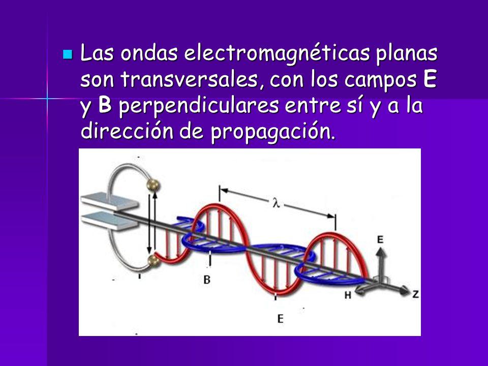 Las ondas electromagnéticas planas son transversales, con los campos E y B perpendiculares entre sí y a la dirección de propagación. Las ondas electro