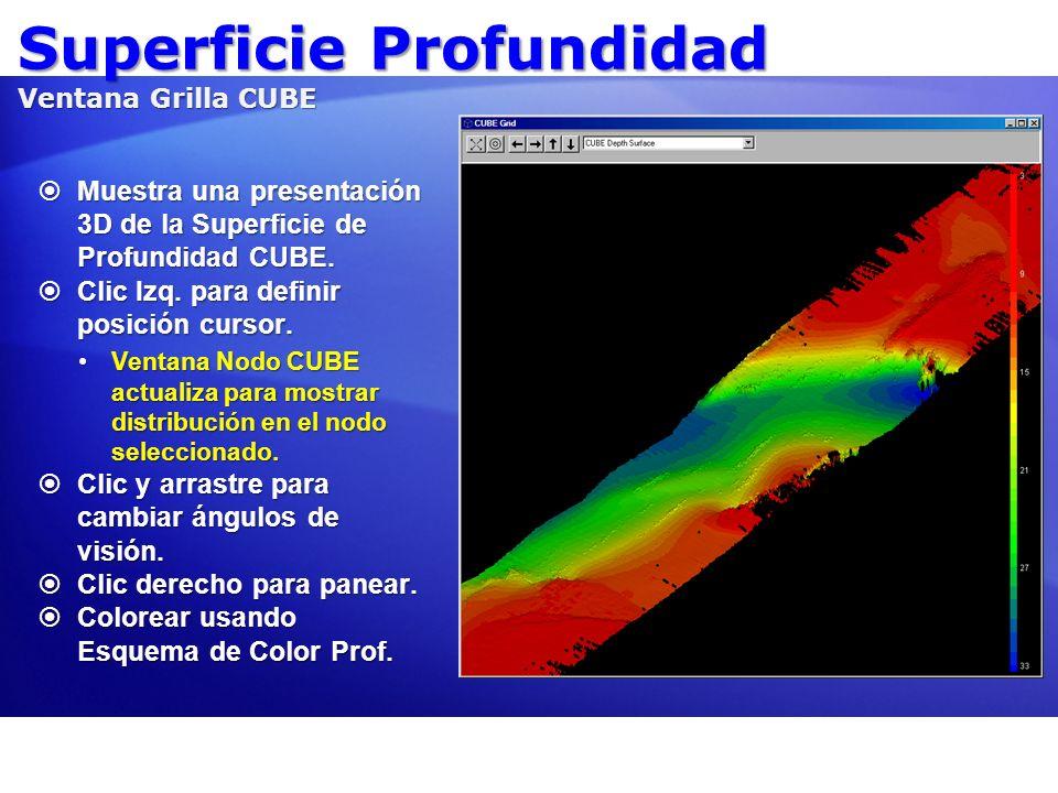 Superficie Profundidad Ventana Grilla CUBE Muestra una presentación 3D de la Superficie de Profundidad CUBE. Muestra una presentación 3D de la Superfi