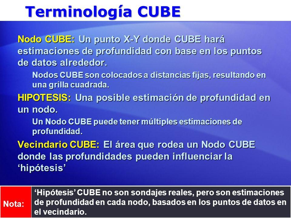 Terminología CUBE Nodo CUBE: Un punto X-Y donde CUBE hará estimaciones de profundidad con base en los puntos de datos alrededor. Nodos CUBE son coloca
