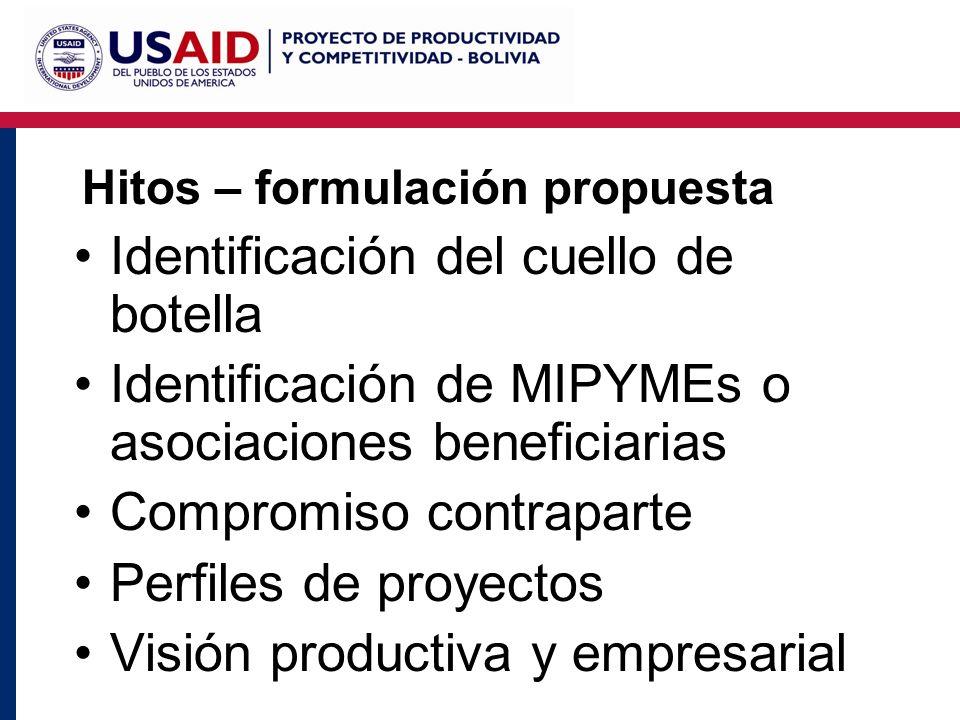 Hitos – formulación propuesta Identificación del cuello de botella Identificación de MIPYMEs o asociaciones beneficiarias Compromiso contraparte Perfiles de proyectos Visión productiva y empresarial