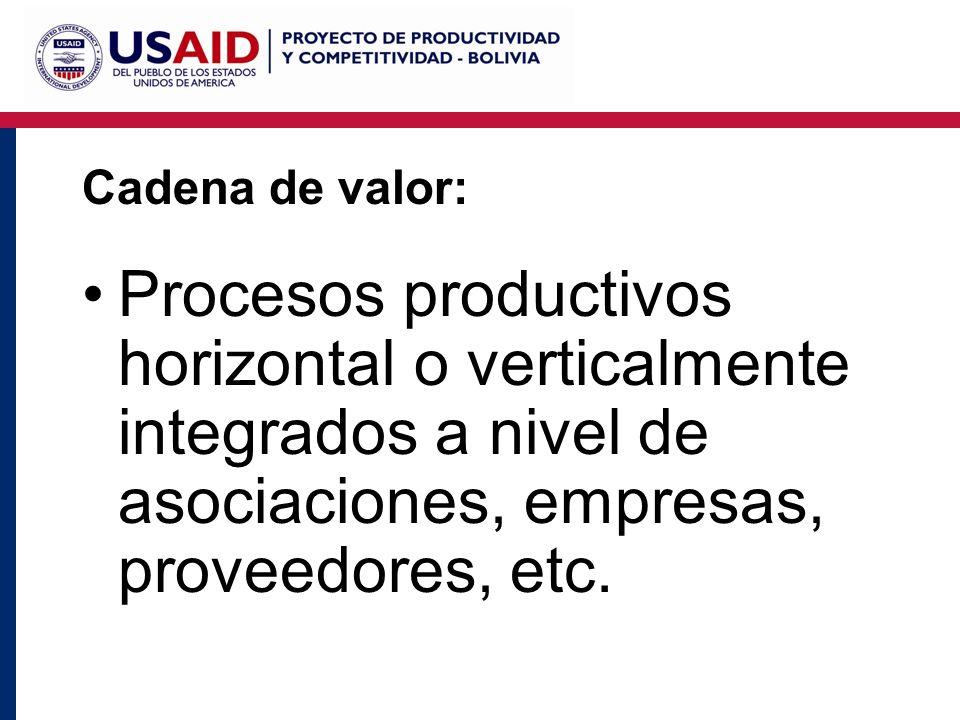 Cadena de valor: Procesos productivos horizontal o verticalmente integrados a nivel de asociaciones, empresas, proveedores, etc.