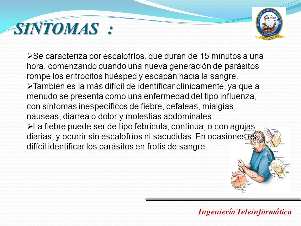 VACUNA Ingeniería Teleinformática El primero en descubrir una vacuna sintética contra la malaria fue el doctor Manuel Elkin Patarroyo, de origen colombiano.