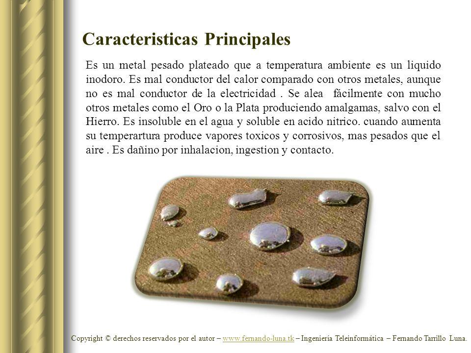 Caracteristicas Principales Copyright © derechos reservados por el autor – www.fernando-luna.tk – Ingeniería Teleinformática – Fernando Tarrillo Luna.