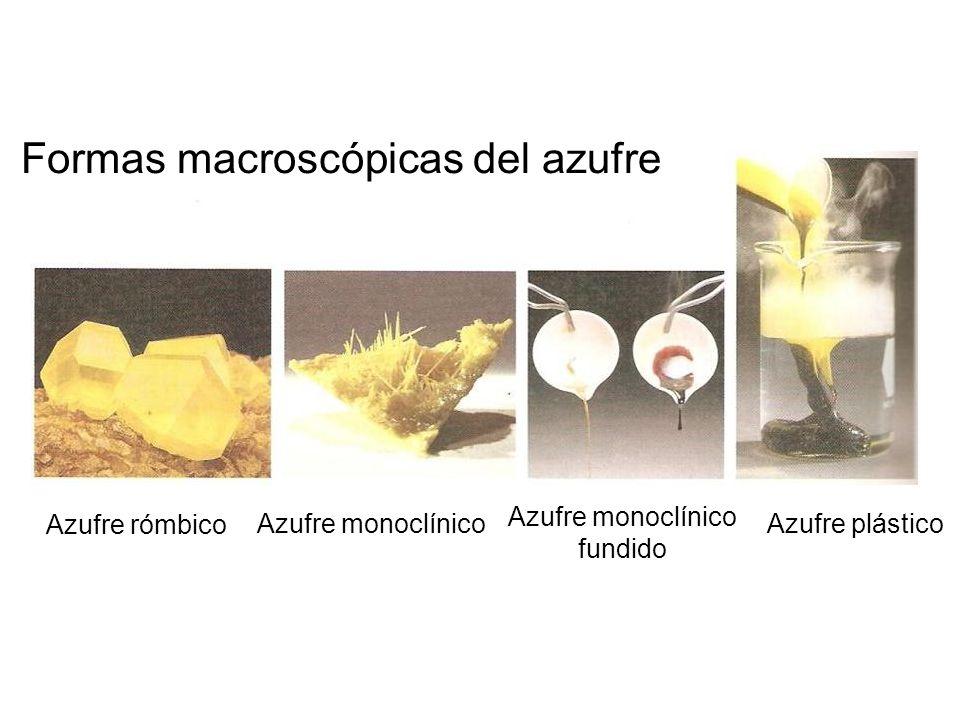 Formas macroscópicas del azufre Azufre rómbico Azufre monoclínico Azufre monoclínico fundido Azufre plástico