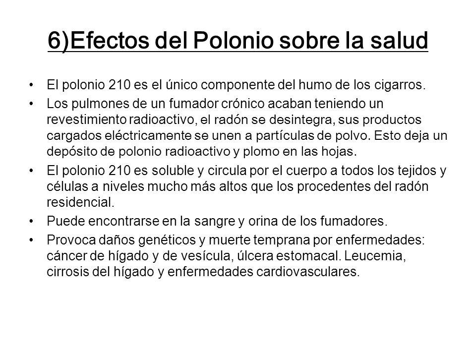 6)Efectos del Polonio sobre la salud El polonio 210 es el único componente del humo de los cigarros. Los pulmones de un fumador crónico acaban teniend