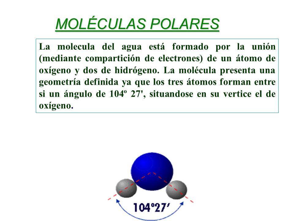La molecula del agua está formado por la unión (mediante compartición de electrones) de un átomo de oxígeno y dos de hidrógeno. La molécula presenta u