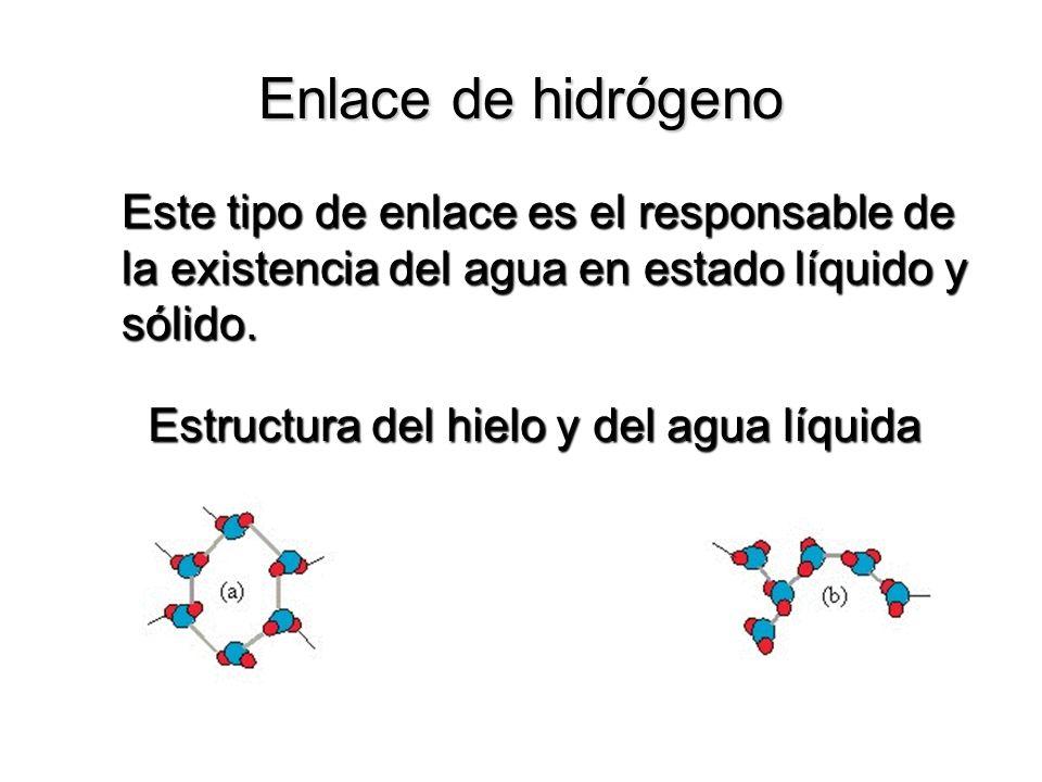 Enlace de hidrógeno Este tipo de enlace es el responsable de la existencia del agua en estado líquido y sólido. Estructura del hielo y del agua líquid