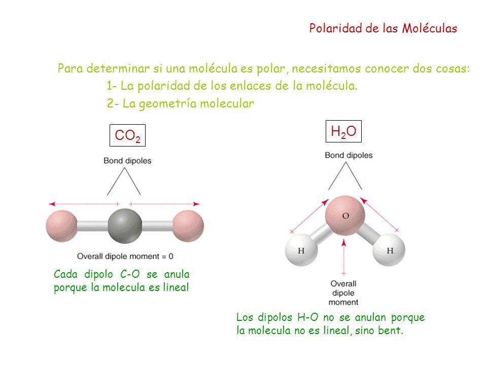 Para determinar si una molécula es polar, necesitamos conocer dos cosas: 1- La polaridad de los enlaces de la molécula. 2- La geometría molecular Pola