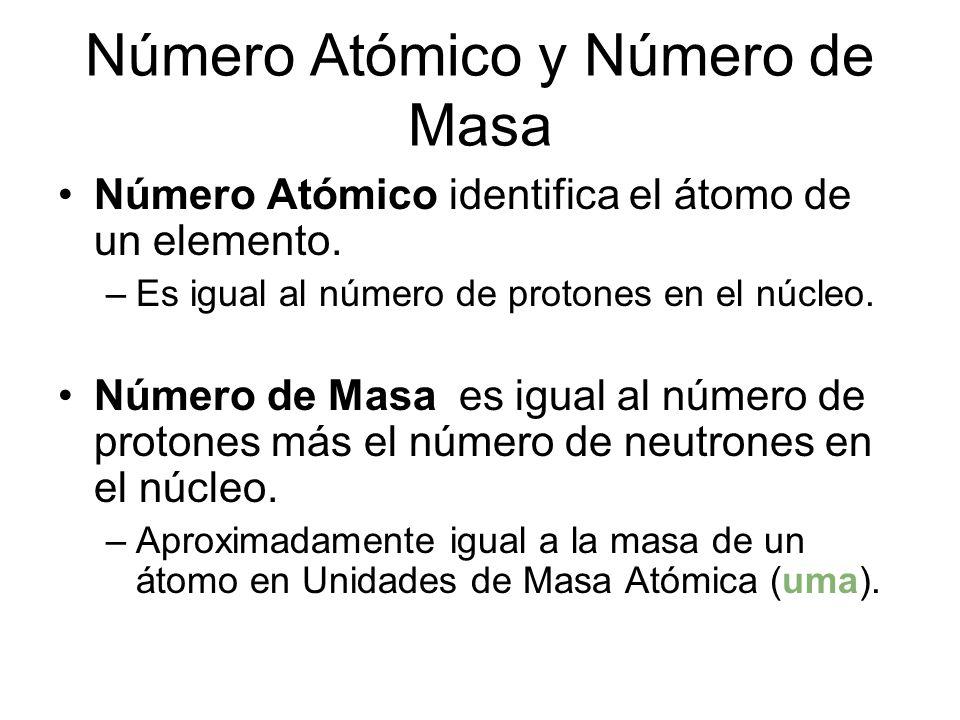 Los atoms son extremadamente pequeños. Han sido fotografiados con: –microscopios electrónicos –microscopios de barrido de tunel y –microscopios de fue