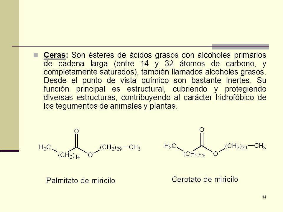 14 Ceras: Son ésteres de ácidos grasos con alcoholes primarios de cadena larga (entre 14 y 32 átomos de carbono, y completamente saturados), también l