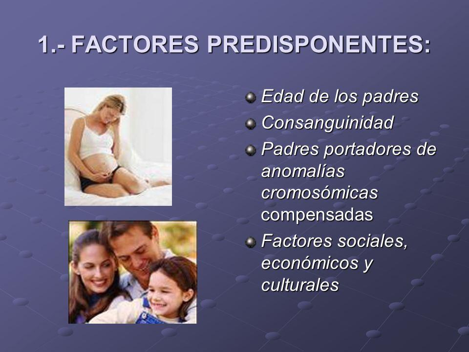 1.- FACTORES PREDISPONENTES: Edad de los padres Consanguinidad Padres portadores de anomalías cromosómicas compensadas Factores sociales, económicos y