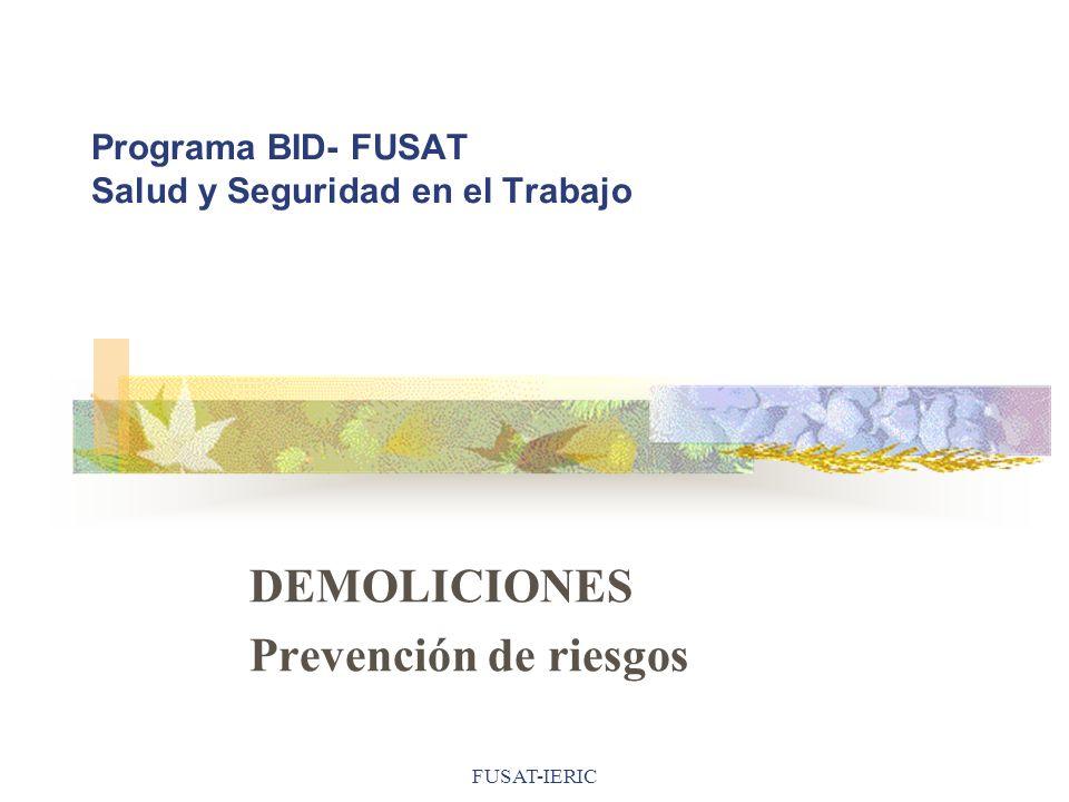 FUSAT-IERIC Programa BID- FUSAT Salud y Seguridad en el Trabajo DEMOLICIONES Prevención de riesgos