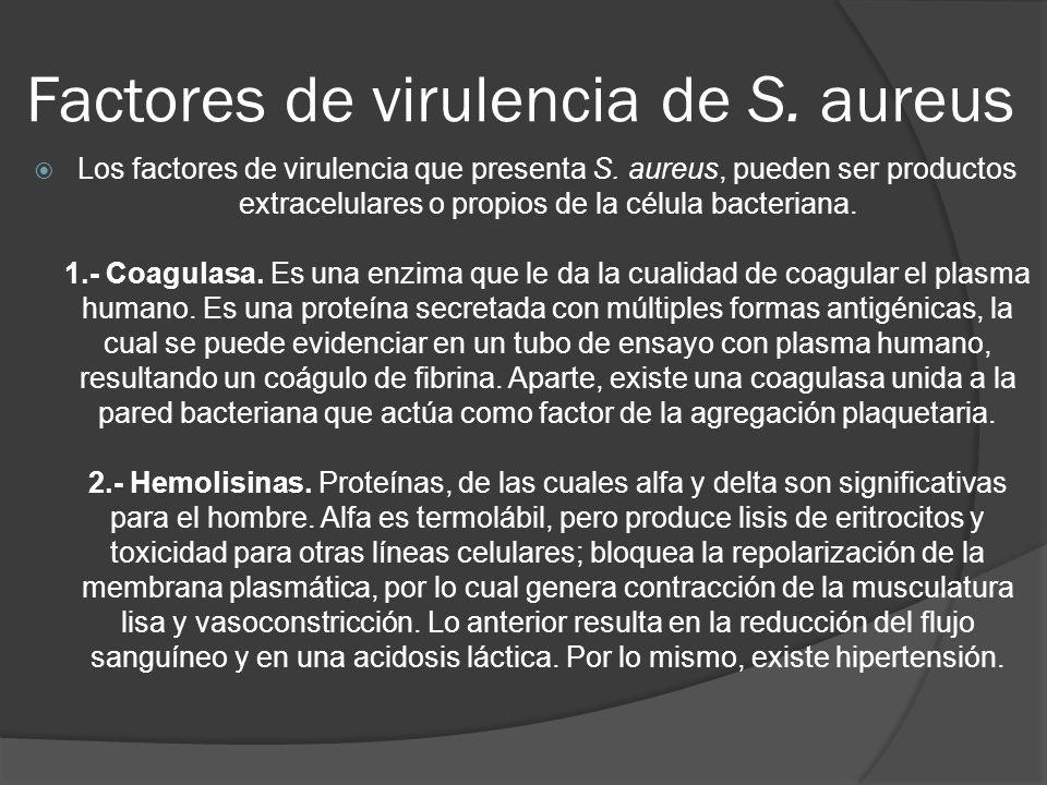 Factores de virulencia de S. aureus Los factores de virulencia que presenta S. aureus, pueden ser productos extracelulares o propios de la célula bact