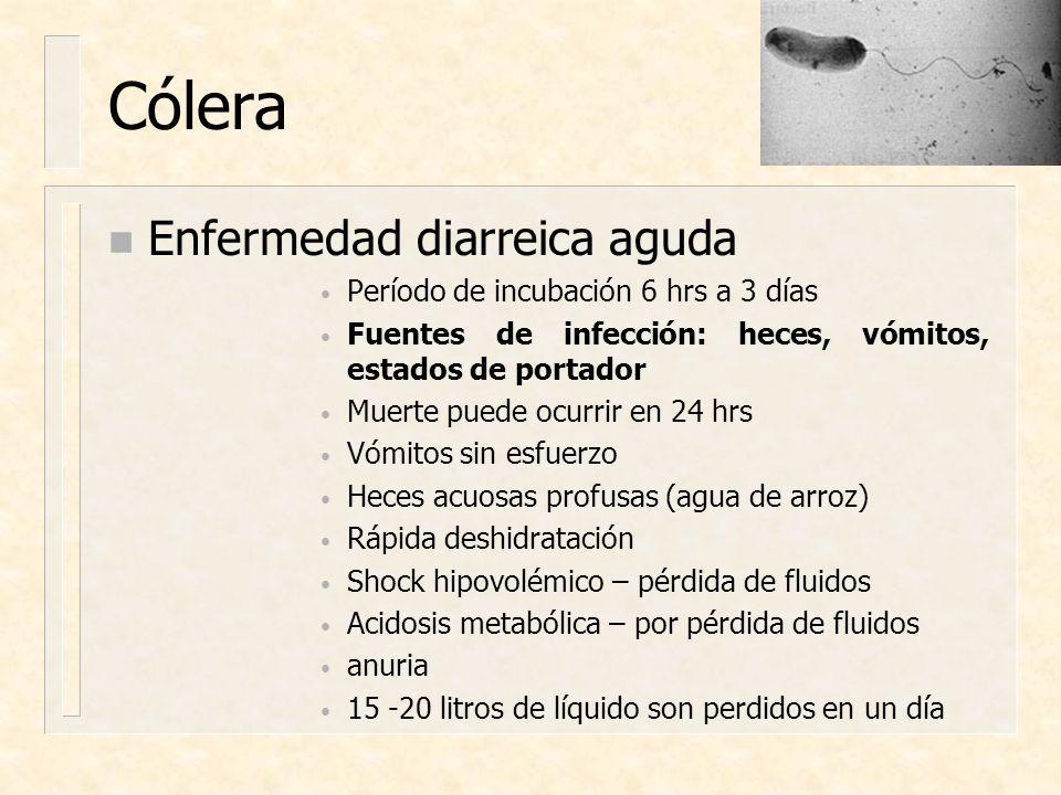Cólera n Enfermedad diarreica aguda Período de incubación 6 hrs a 3 días Fuentes de infección: heces, vómitos, estados de portador Muerte puede ocurri