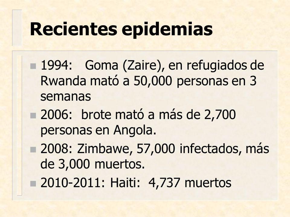 Recientes epidemias n 1994: Goma (Zaire), en refugiados de Rwanda mató a 50,000 personas en 3 semanas n 2006: brote mató a más de 2,700 personas en An
